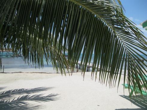 Belize 2013 376